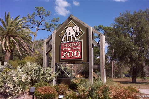 Lowry Park Zoo & Florida Aquarium