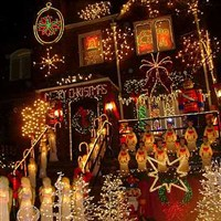 Christmas Lights & Cannoli Tour in Brooklyn
