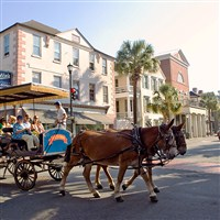 Charleston, Savannah & Jekyll Island Meeting