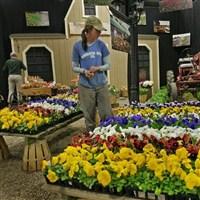 Boston Flower Show