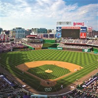 NY Yankees vs. Washington Nationals in DC