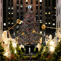 NYC Holiday Lights Tour