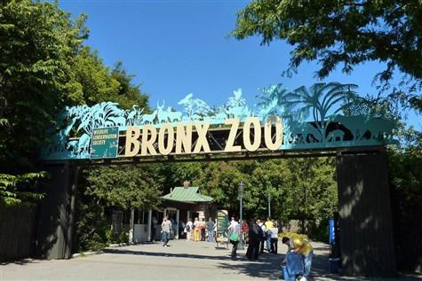 Bronx Zoo 2021
