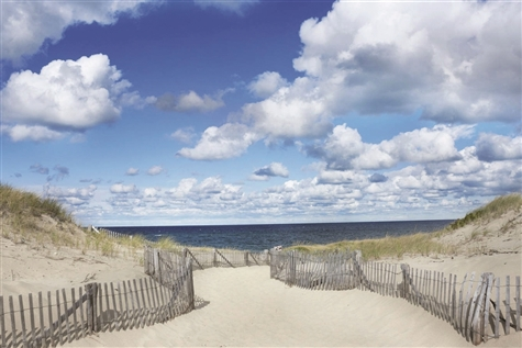 Cape Cod Summer Breezes