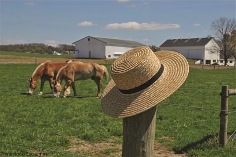 Amish Country & Hershey Sampler