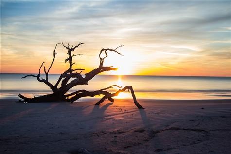 Charleston, Savannah & Jekyll Island