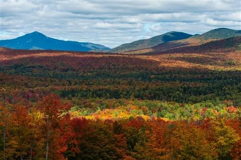 Great Northern Catskill Fall Foliage